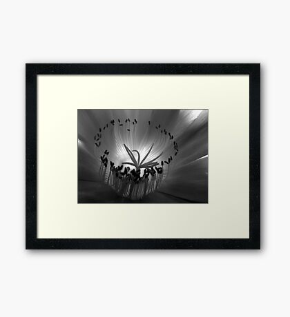 Ceremony Framed Print