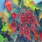 Kalyna Berries  von bevmorgan