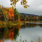 Fall At Pillsbury State Park, Washington, NH by Len Bomba