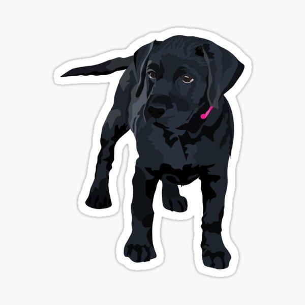Black Lab Puppy, Black Lab Sticker, Black Lab Pup Sticker, Black Dog Sticker, Pink Collar Sticker, Dog Sticker, Puppy Sticker, Cute Sticker, Cool Sticker Sticker