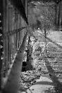 Path Less Taken by Vicki Pelham