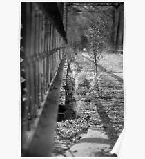 Path Less Taken Poster
