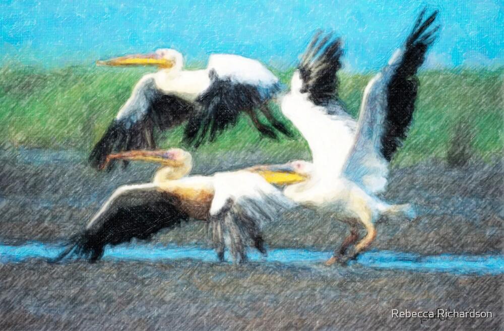 In Flight by Rebecca Richardson