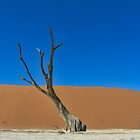 Dead Tree on an Ancient River Bed by vrphotographysa