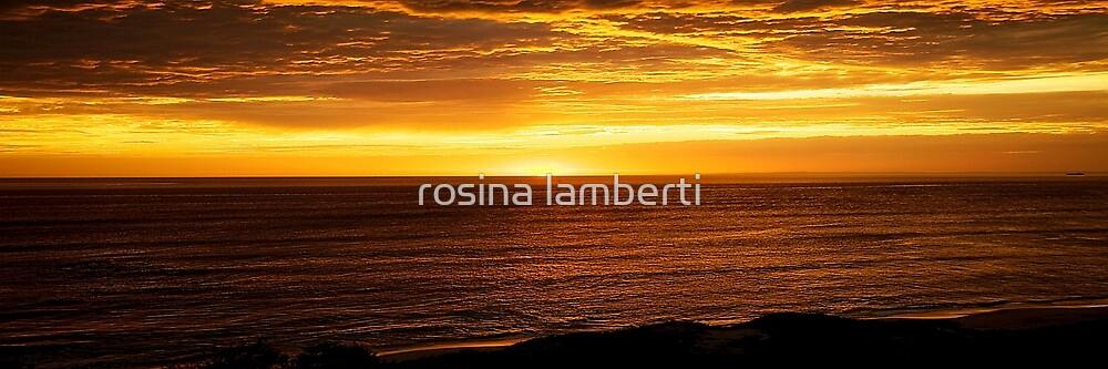 Bass Strait coastline by rosina lamberti