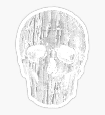 Ripped Up Skull Sticker