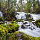 Pearsony Falls, Oregon by journeysincolor