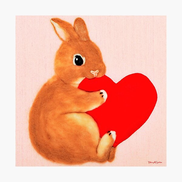 bunny munching heart (2014) Rabbit / Bunny Art Photographic Print