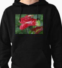 Bi-colour Anthurium Pullover Hoodie