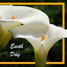 Earth Day - lilies by Eve Parry