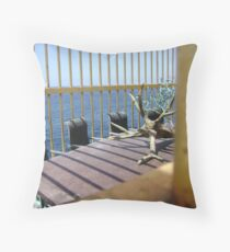 Caged Office Throw Pillow