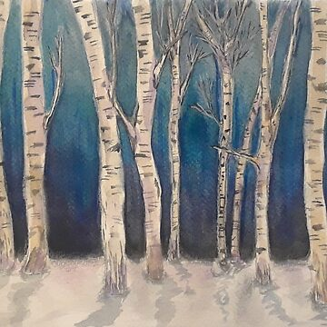Birch Grove At Midnight by jenhallbrown
