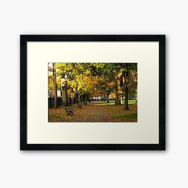Autumn in Salem Commons Framed Art Print