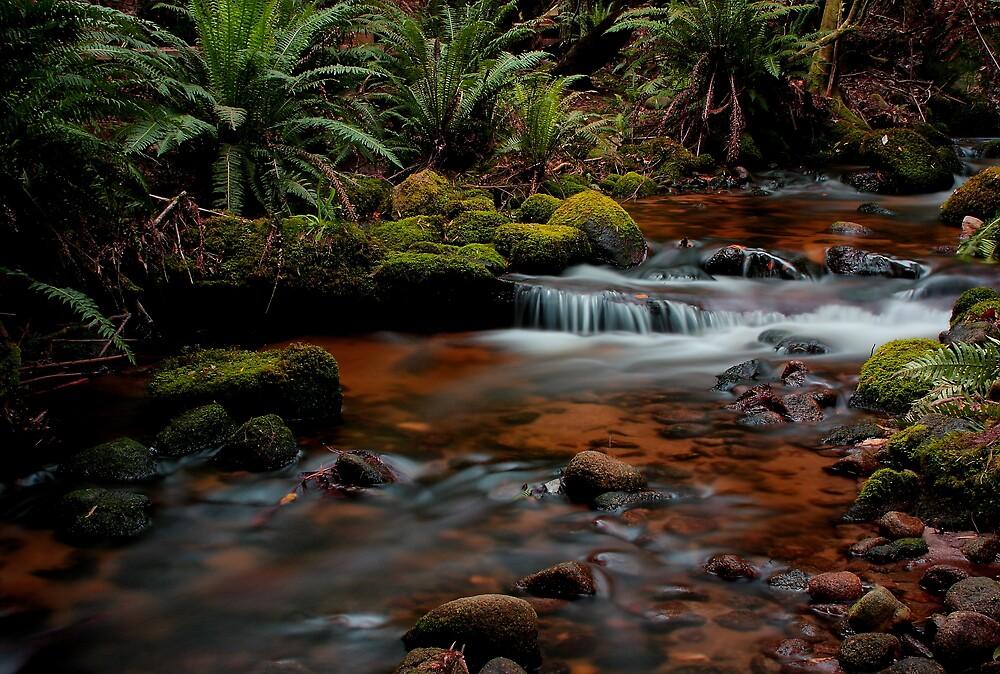 Cuckoo Falls, small cascades 2 by Husky