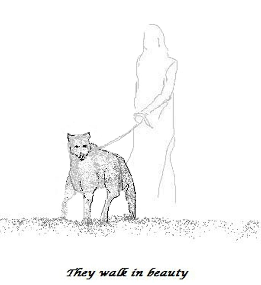 They Walk in Beauty by Carole Boyd