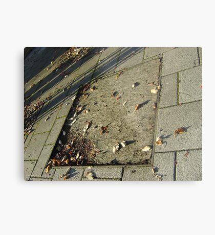 autumn quadrilateral (pavement in Fall, Burntisland) Metal Print