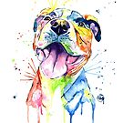 Pitbull Colorful Pet Portrait Watercolor Painting by Lisa Whitehouse
