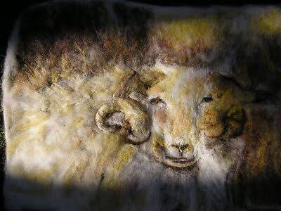 Myharen fynydd Gymreig by NaturesWhispers