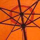 Orange Shade by Elspeth  McClanahan