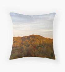 Late Autumn, Late Day Throw Pillow