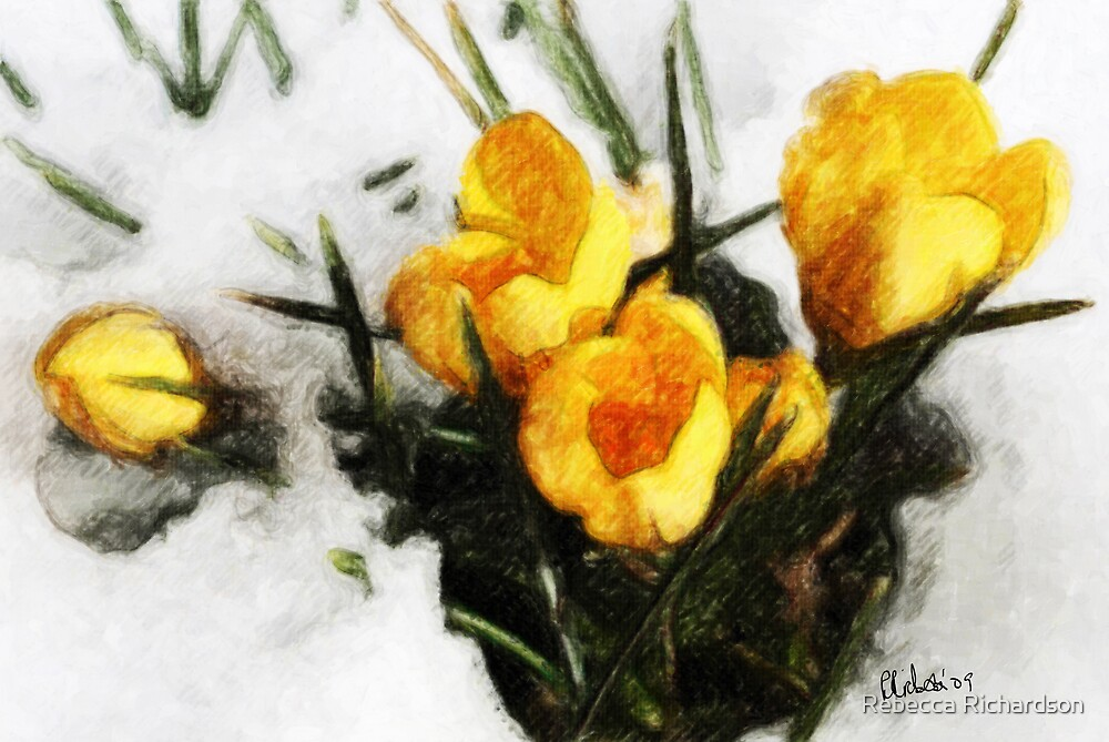Promise of Spring by Rebecca Richardson