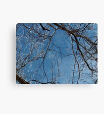 The Beauty of the Storm Canvas Print
