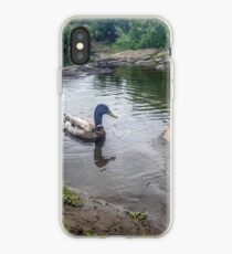 Duck in Water iPhone Case