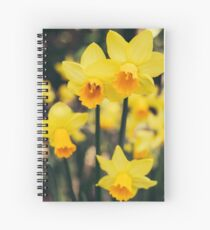Yellow Daffodil Flowers Spiral Notebook