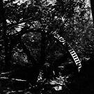 Dead Watermill (1996) by hynek