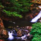 New Yorks Adirondack region XVIII by PJS15204