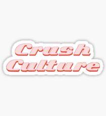 conan gray crush culture Sticker