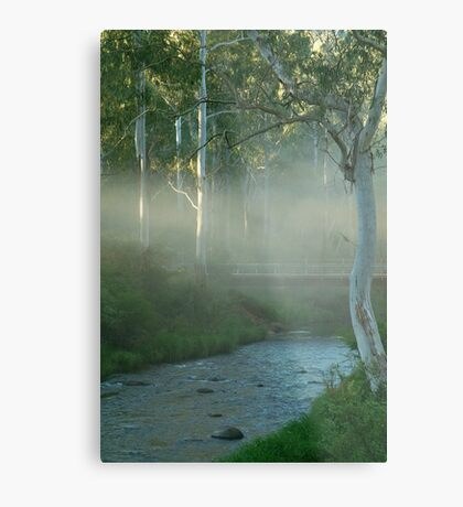 Dusty Trail,Sheepyard Flat, Victorian High Country Metal Print
