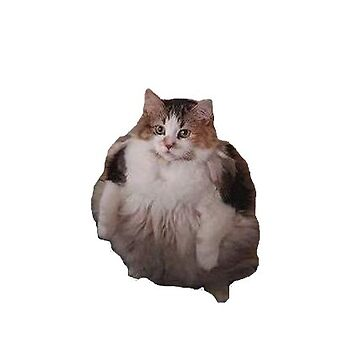 """""""loops, brother"""" cat cutout by p0pculture3"""