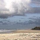 Fraser Island's Lovely Beach by Tammy Serdiuk