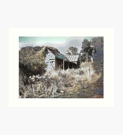 Old house reclaimed by nature Art Print