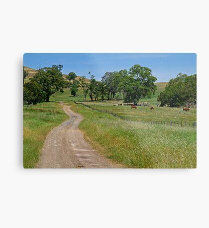 Country Lane Metal Print
