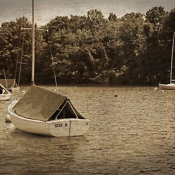 Sailboats by meltedxpopsicle