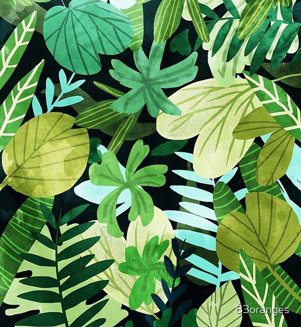 Rainforest    by 83oranges