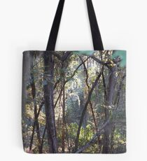 A ray of sunlight in the woods Tote Bag