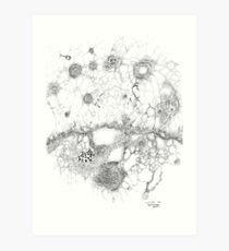 Bacteriophage ballet, ink drawing on paper by Regina Valluzzi Art Print