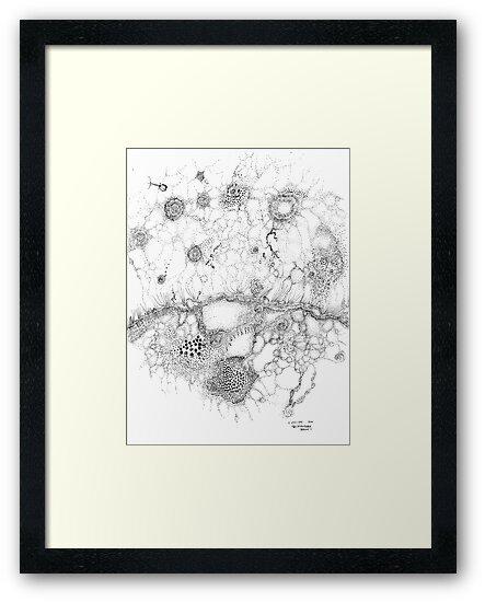 Bacteriophage ballet, ink drawing on paper by Regina Valluzzi by Regina Valluzzi