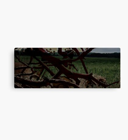 Surreal Field Canvas Print