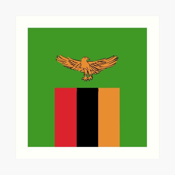 Zambia flag emblem Art Print