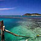 Fiji by Alex Marks