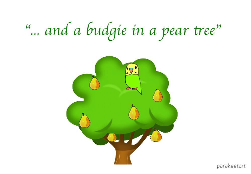 """... and a budgie in a pear tree"" by parakeetart"