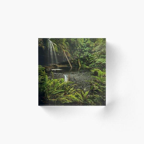 Lower Kalimna falls waterfalls Acrylic Block