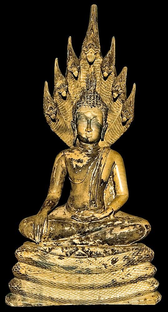 Budda/Naga - Vat Phou Museum, Champassack, Laos by AsiaArchaeology