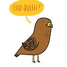 Esso quissi!  by Aurora Cacciapuoti