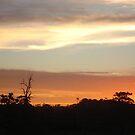 Orange Sky by Paulaa