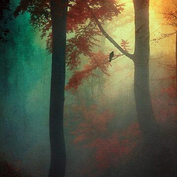Waking Light by DyrkWyst